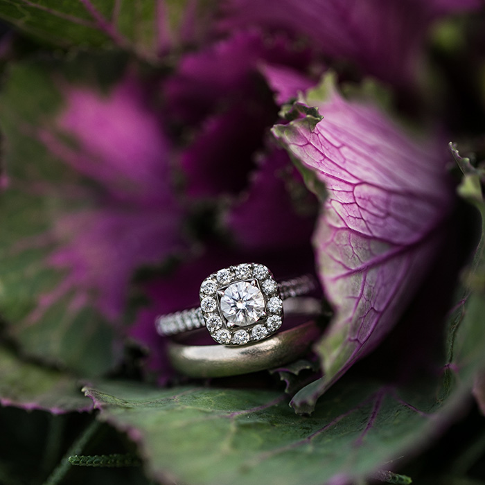 ring-detail-shot-decorative-cabbage
